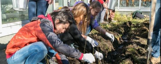Екатеринбургские студенты посадили яблоню, сливу и кедр